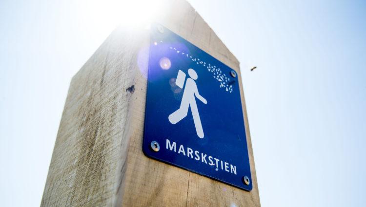 Foto: Ulrik Pedersen, Tøndermarsk Initiativet Billedet må bruges i forbindelse med omtale af Tøndermarsken.