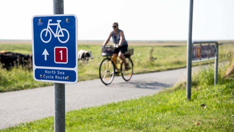 Foto: Ulrik Pedersen, Tøndermarsk Initiativet. Billedet må benyttes i forbindelse med omtale af Tøndermarsken og/eller Tøndemarsk Initiativet.