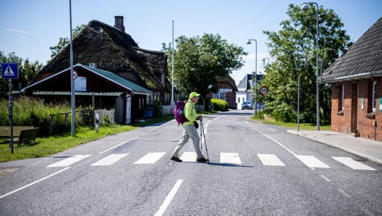 GåTur i Tøndermarsken. Foto: Ulrik Pedersen, Tøndermarsk Initiativet. Billedet må benyttes i forbindelse med omtale af Tøndermarsken og/eller Tøndemarsk Initiativet.